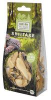 Shiitake, getrocknet
